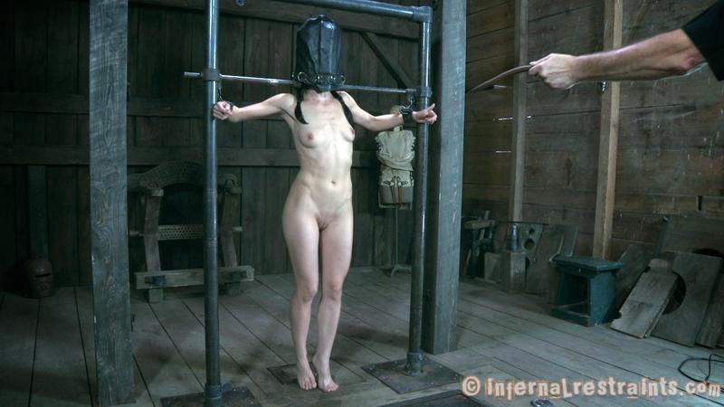 cage bdsm Torture